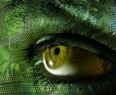 Green eye chip — Stock Photo