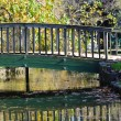 Bridge in park — Stock Photo