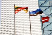Lithunian, Estonian and Latvian national flags — Stock Photo
