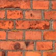 Royalty-Free Stock Photo: Old red bricks wall background