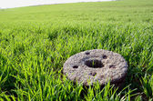Old millstone on winter crop spring field — Stock Photo