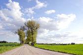 Krajobraz drogi kraj — Zdjęcie stockowe