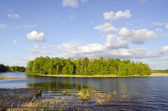 Little island in the spring lake — Foto Stock