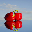 Two red peppers on mirror — Stock Photo #5730827