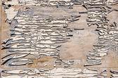 Grunge en gebarsten beschilderde deur achtergrond — Stockfoto