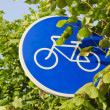 Bicycle track sign and tree leafs - Stock Photo