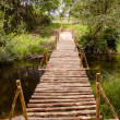 Stock Photo: New handmade brigde and river