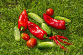 Red and green vegetables on the grass — Stock Photo