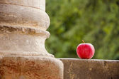 Red apple and column — Foto de Stock
