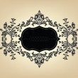 Vintage frame with floral ornament — Stock Vector #6470829