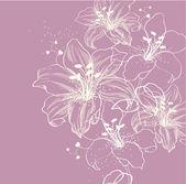 Fundo floral com lírios florescendo — Vetorial Stock