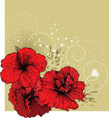 Floral background with red hibiscus — Stock Vector