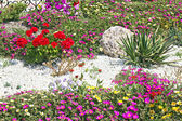 Flower beds — Stock Photo