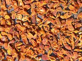 Dried apricots dried in the sun — Stock Photo