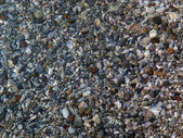 Beach Pebbles. — Stock Photo