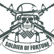 Stock Vector: Soldier of Fortune