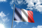 Flag of France — Stockfoto