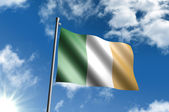 Flag of Ireland — Stock Photo