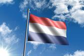 Flaga holandii — Zdjęcie stockowe