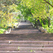 Staircase in the park — Stock Photo #6276036