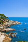Vista del Cap sa Sal (Costa Brava), Cataluña, España — Zdjęcie stockowe