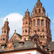 Mainz Cathedral — Foto Stock