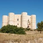 Castel del Monte, Apulia — Stock Photo #5811560