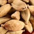 Cardamom background — Stockfoto