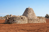 Ancient Trulli houses in Apulia — Stock Photo