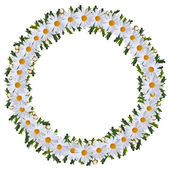 Wreath of flowers — Stock Photo