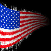 Us flag — Stock Vector