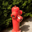 Red Fire Hydrant — Stock Photo #6115044