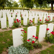 British War Cemetery — Stock Photo #6115056