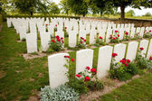 British War Cemetery — Stock Photo