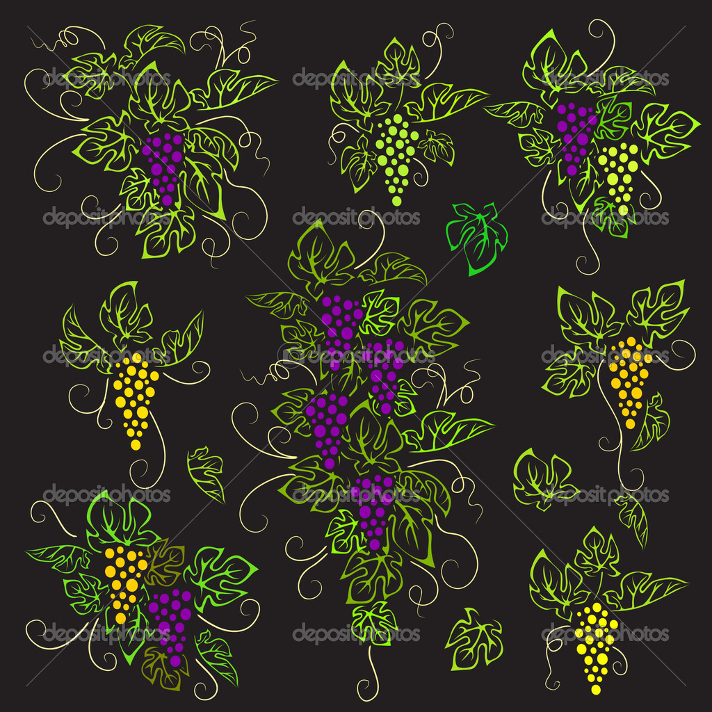 Grape with leaves, on black background, may be used as print — Stock Vector #5439829