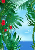 Tropic sea — Stock Photo