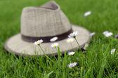 Kapelusz i kwiaty — Zdjęcie stockowe