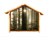 A wood house — Stock Photo