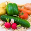 Different vegetables - Stockfoto