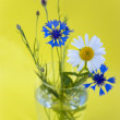 Wild flowers on a yellow background — Stock Photo #5831315