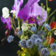 Bucket of summer fresh wild flowers isolated on black background — Stock Photo