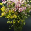 Bouquet of summer fresh wild flowers isolated on black background — Stock Photo #5999238