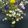 Bouquet of summer fresh wild flowers isolated on black background — Stock Photo #6001247