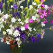 Bouquet of summer fresh wild flowers isolated on black background — Stock Photo #6001261