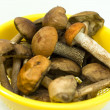 Fresh mushrooms in a yellow bowl — Stock Photo
