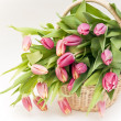 Wooden basket with pink  tulips isolated - Stock Photo