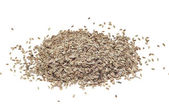 Dill seeds — Stock Photo