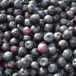 Stock Photo: Berry bilberry.
