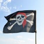Piracy flag. — Stock Photo #6119968