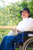 Person in wheelchair and cats — Stock Photo